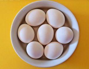 Best Egg Cooker - eggs bowl